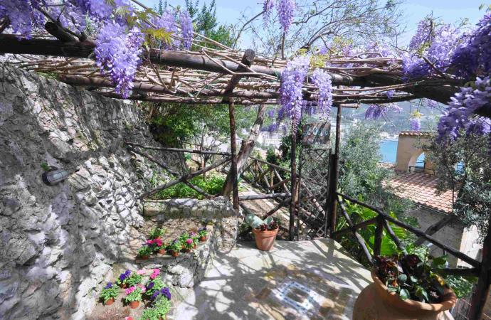 33492) Star Fish House , Ravello