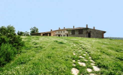 42752) holidays flat siena view