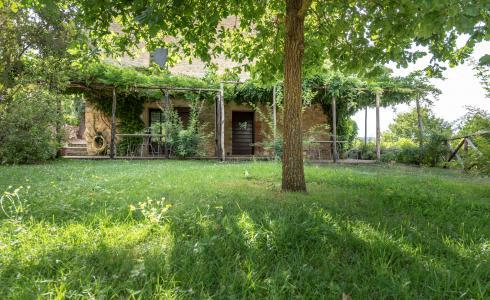Apartment in Chianti with pool ID 456